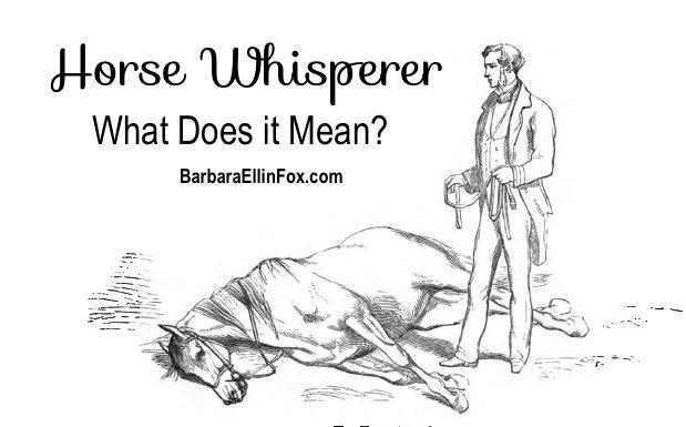 Horse Whisperer BarbaraEllinFox.com